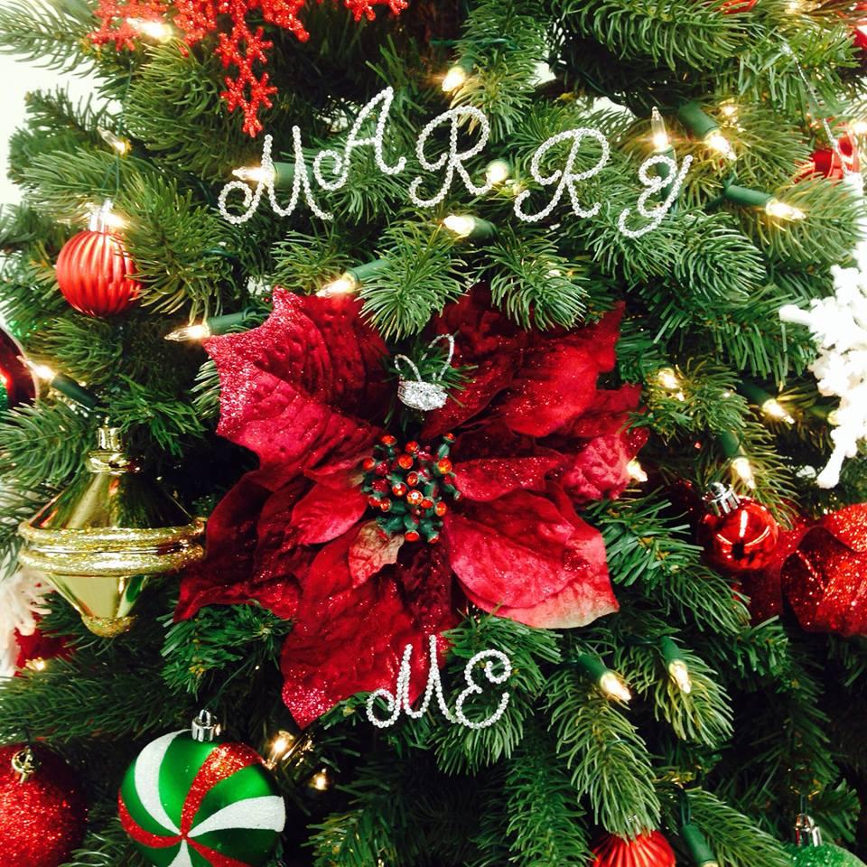 Merry Christmas 2-12.24.2013-1
