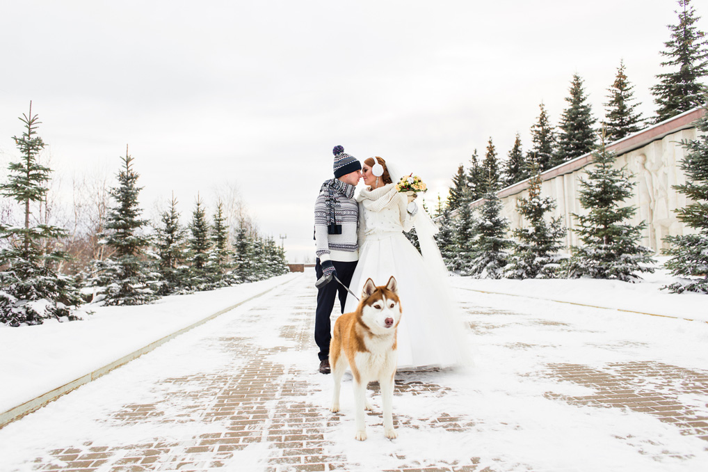 bride-and-groom-wedding-with-dog-winter-outdoor-000103390735_medium-1